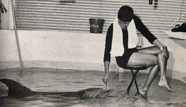 peter y margaret-Margaret Howe Lovatt-delfines-sexo-experimento-lenguaje